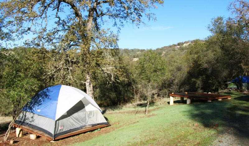 One Yoga Farm Accommodation option is to set up a tent and sleep under the stars.