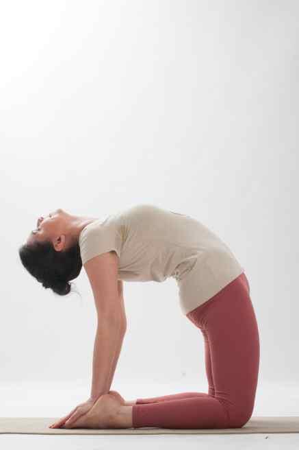 additional yoga pose camel