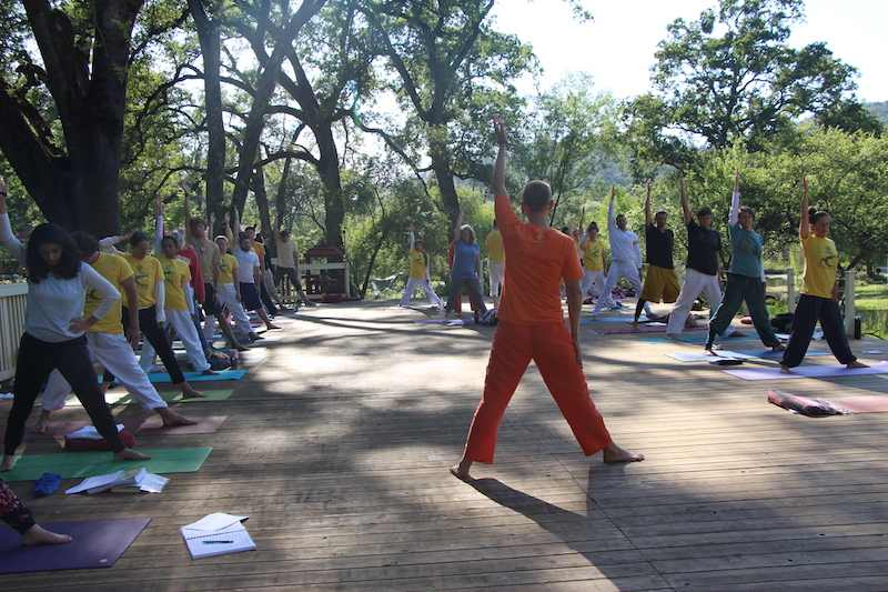 Wide view Teaching Yoga outside under sun and trees with many students arm up