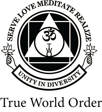 True World Order Logo