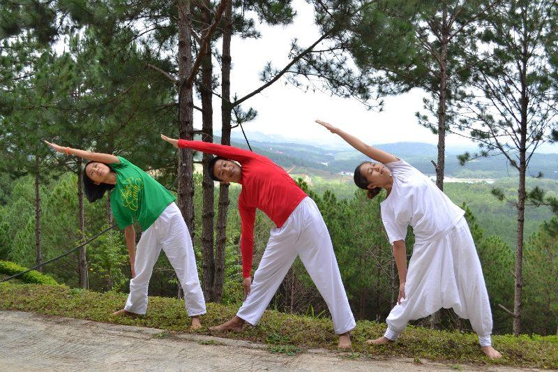 Sivananda Yoga teacher training courses around the world.