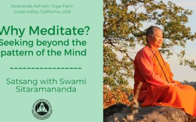 Why Meditate? Seeking beyond the Pattern of the Mind